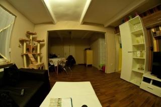 Wohnzimmer mit Fisheye fotografiert