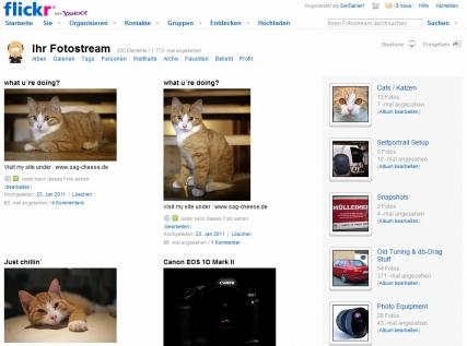 netzwerk_flickr