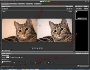 Photomizer Arbeitsbildschirm