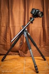 vanguard-carbon-alta-pro-283ct-kugelkopf-sbh-100-7